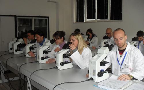 Microscope Room
