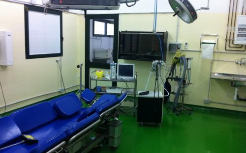 Sala operatoria grandi animali